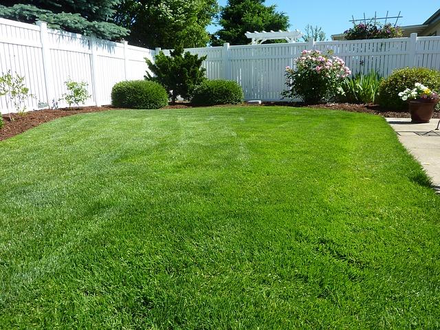 sejanje trave